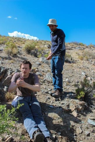 Noosing Crotaphytus with Gideon Bradburd - Kingston Mtns, CA (photo by Jessica dos Anjos)