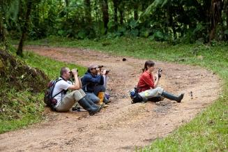 Eric Schaad, Fernando Ayala-Varela, and Melissa Aja observing anoles - Mindo, Ecuador