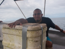 Julian Velasco with a massive Bothrops asper - Gorgona Island, Colombia