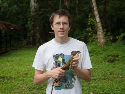 Basiliscus galeritus - Gorgona Island, Colombia (photo by Anthony Herrel)