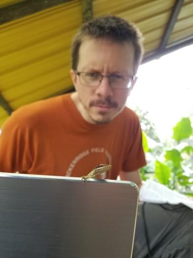 Luke Mahler vs Anolis peraccae - Bilsa Research Station, Ecuador